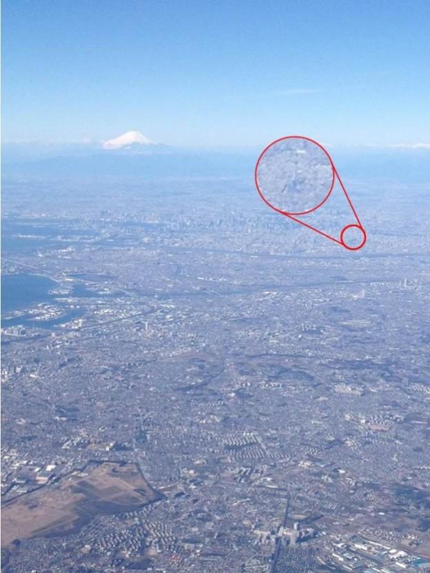 富士とツリー